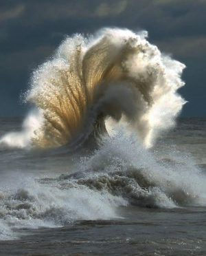 cropped-wave-e14865378179491.jpg